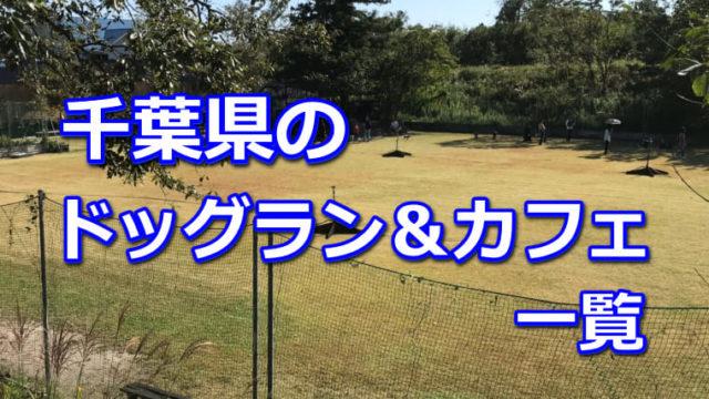 千葉県のドッグラン、ドッグカフェ一覧