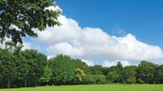 ドッグラン 青葉の森公園