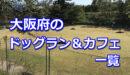 大阪府全域のドッグラン・ドッグカフェ一覧!室内などのおすすめドッグランもご紹介♪-柴犬の図書館