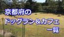 京都府全域のドッグラン・ドッグカフェ一覧!室内などのおすすめドッグランもご紹介♪-柴犬の図書館