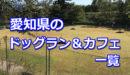 愛知県全域のドッグラン・ドッグカフェ一覧!室内などのおすすめドッグランもご紹介♪-柴犬の図書館