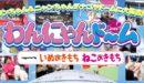 わんにゃんドーム2019in名古屋のチケット招待券情報や出店ブース、住所や駐車場情報など!【愛知県・ペットイベント】-柴犬の図書館